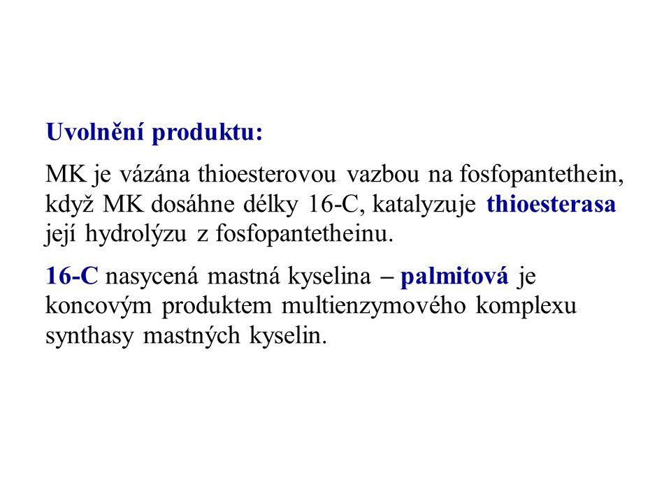 Uvolnění produktu: