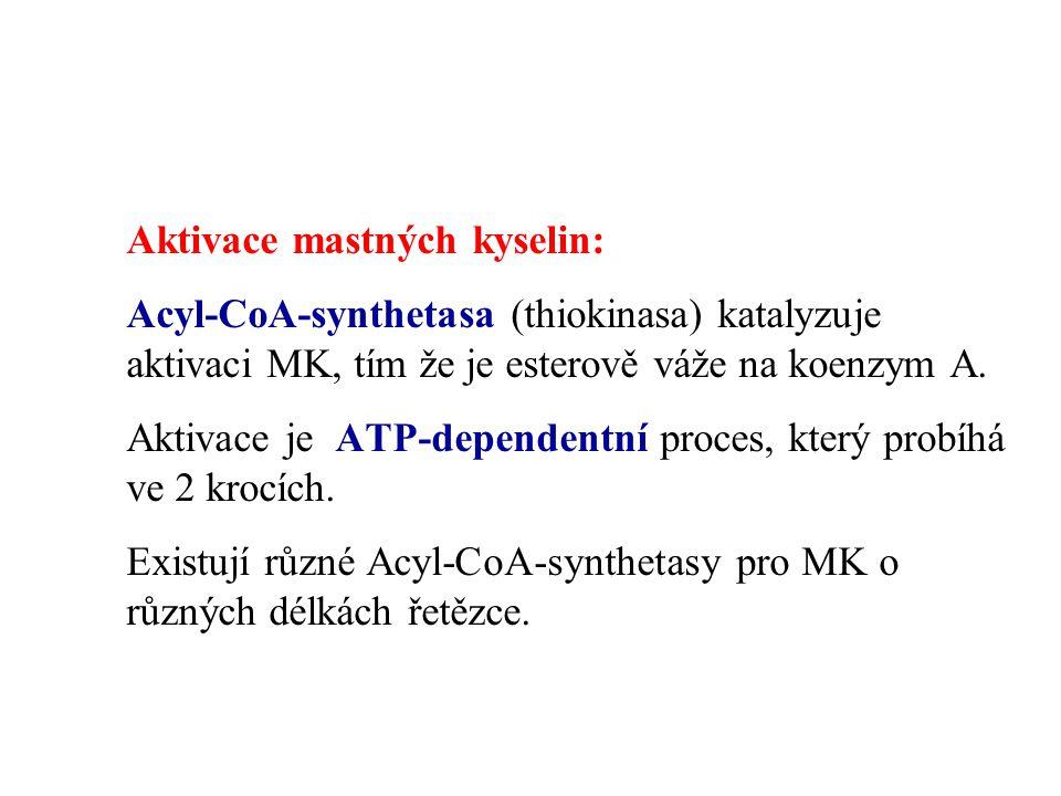Aktivace mastných kyselin:
