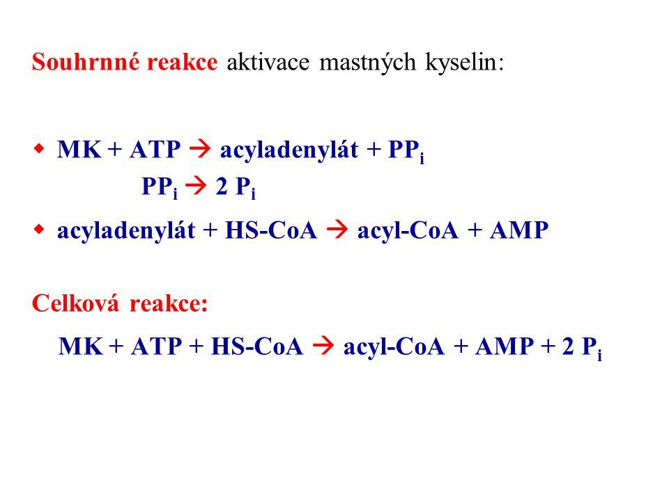 Souhrnné reakce aktivace mastných kyselin: