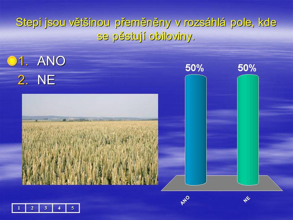 Stepi jsou většinou přeměněny v rozsáhlá pole, kde se pěstují obiloviny.