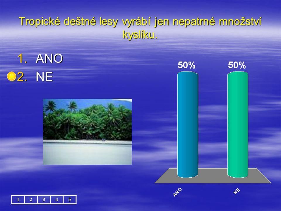 Tropické deštné lesy vyrábí jen nepatrné množství kyslíku.
