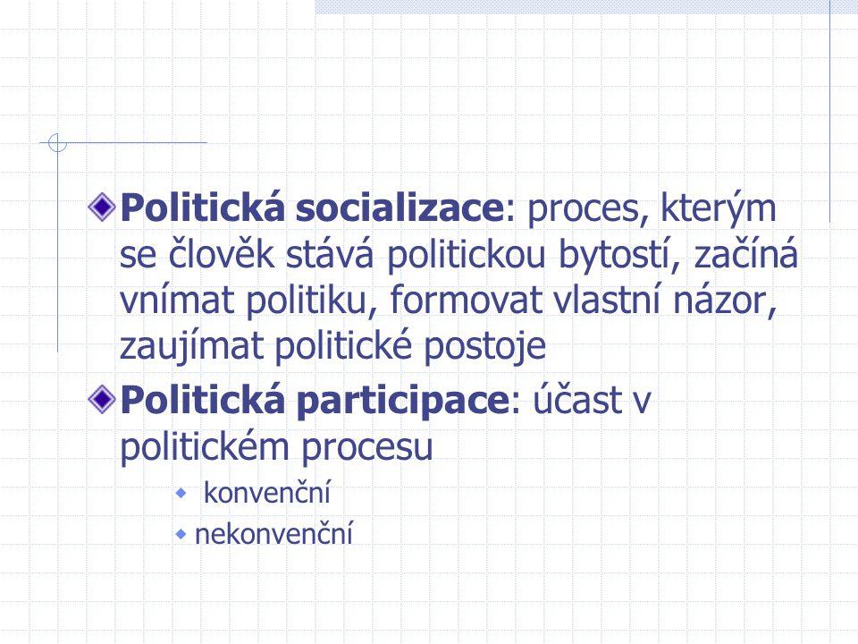 Politická participace: účast v politickém procesu