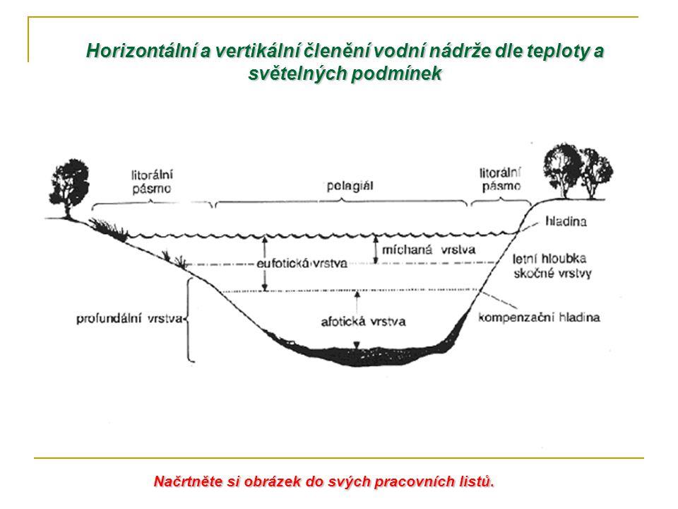 Horizontální a vertikální členění vodní nádrže dle teploty a světelných podmínek