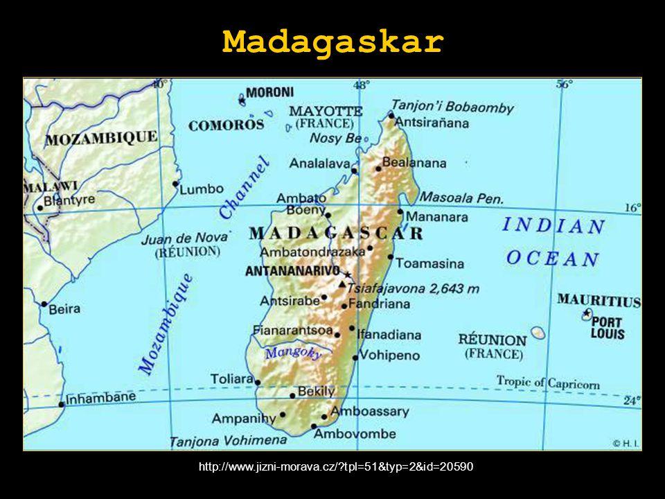 Madagaskar http://www.jizni-morava.cz/ tpl=51&typ=2&id=20590