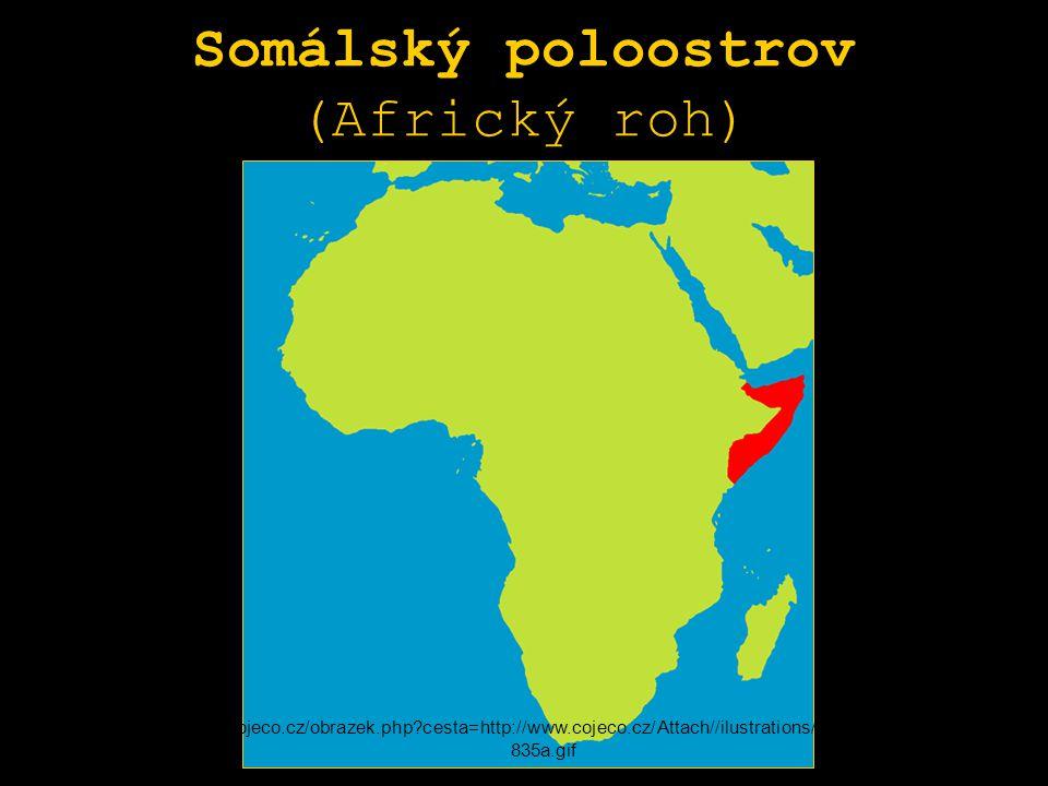 Somálský poloostrov (Africký roh)