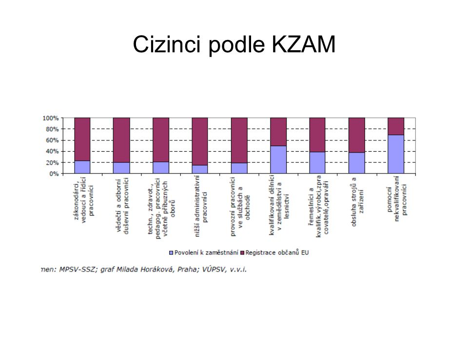 Cizinci podle KZAM