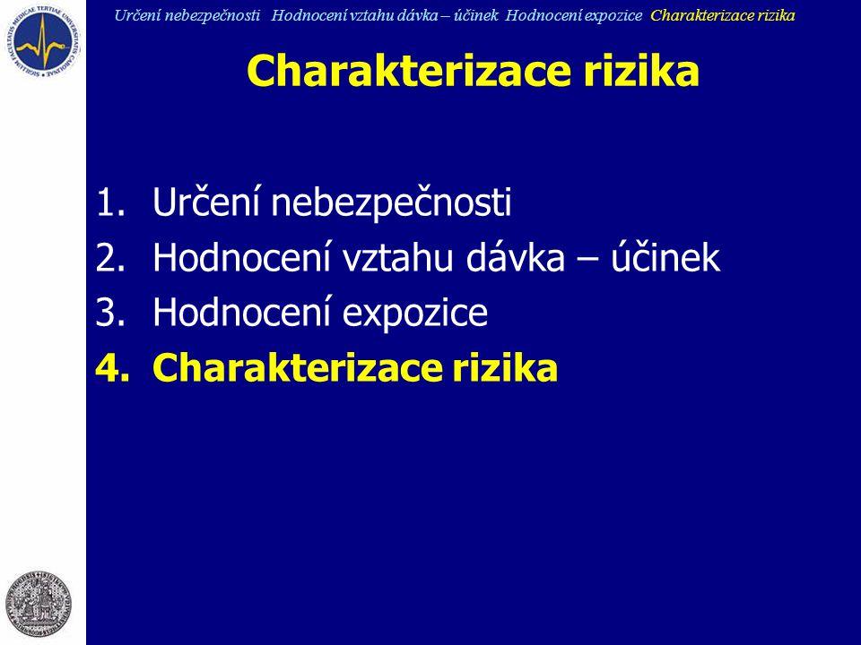 Charakterizace rizika
