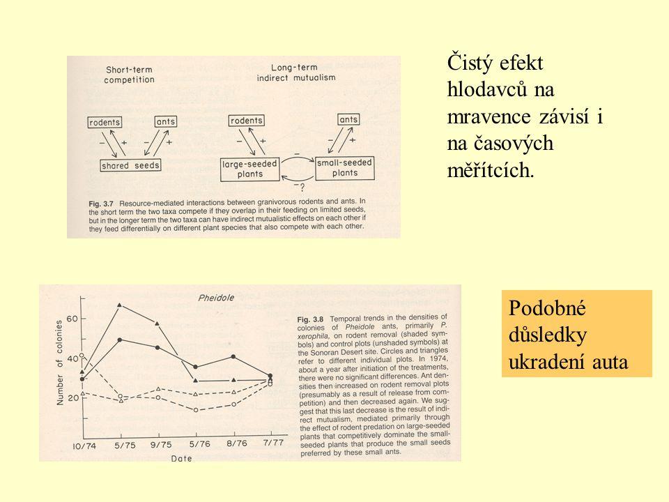 Čistý efekt hlodavců na mravence závisí i na časových měřítcích.