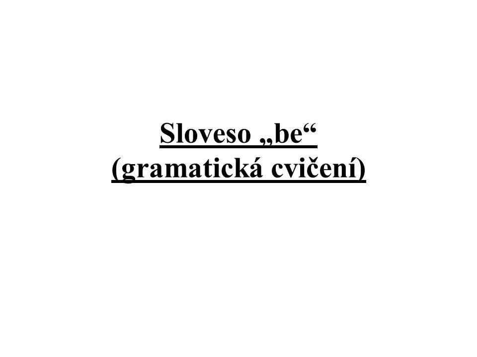 """Sloveso """"be (gramatická cvičení)"""