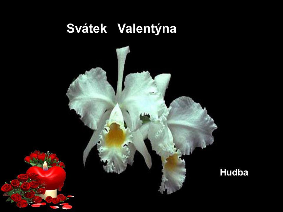 Svátek Valentýna Hudba