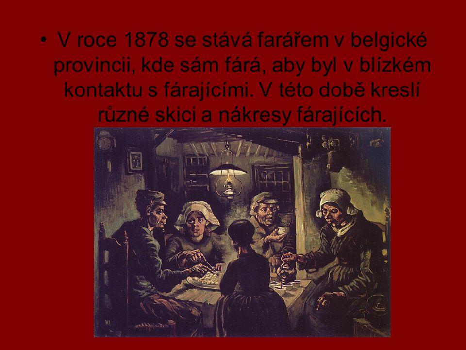 V roce 1878 se stává farářem v belgické provincii, kde sám fárá, aby byl v blízkém kontaktu s fárajícími.