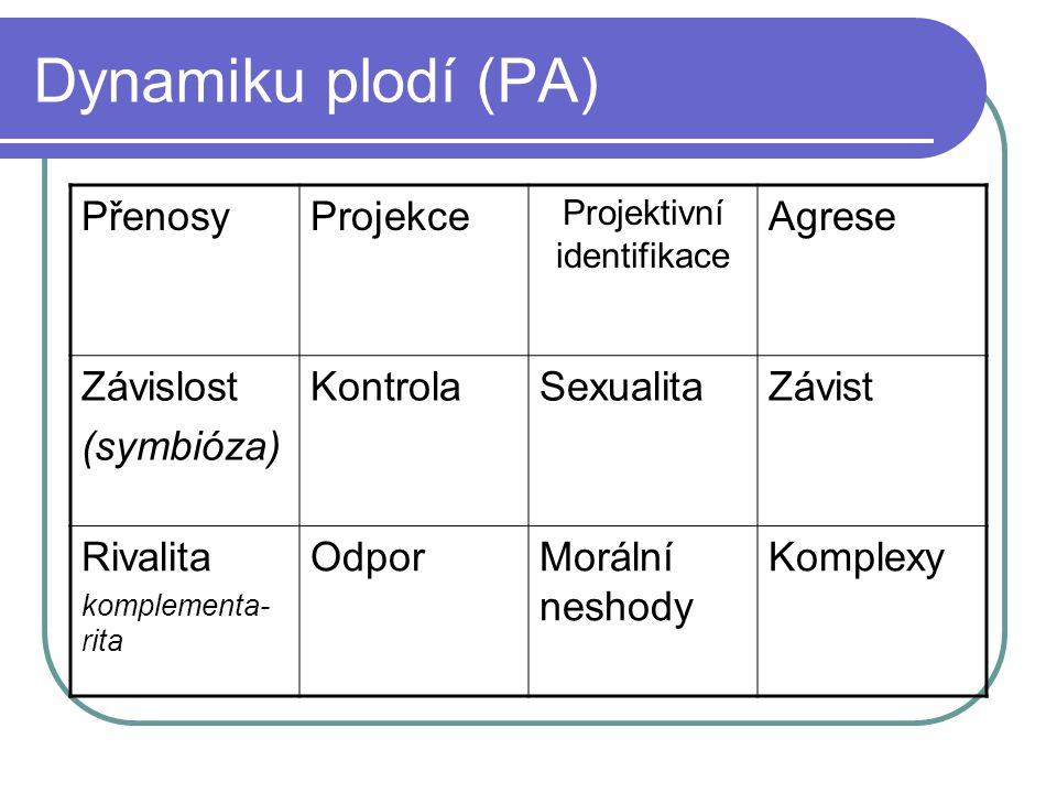 Projektivní identifikace
