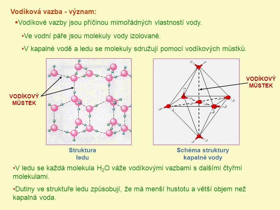 Schéma struktury kapalné vody