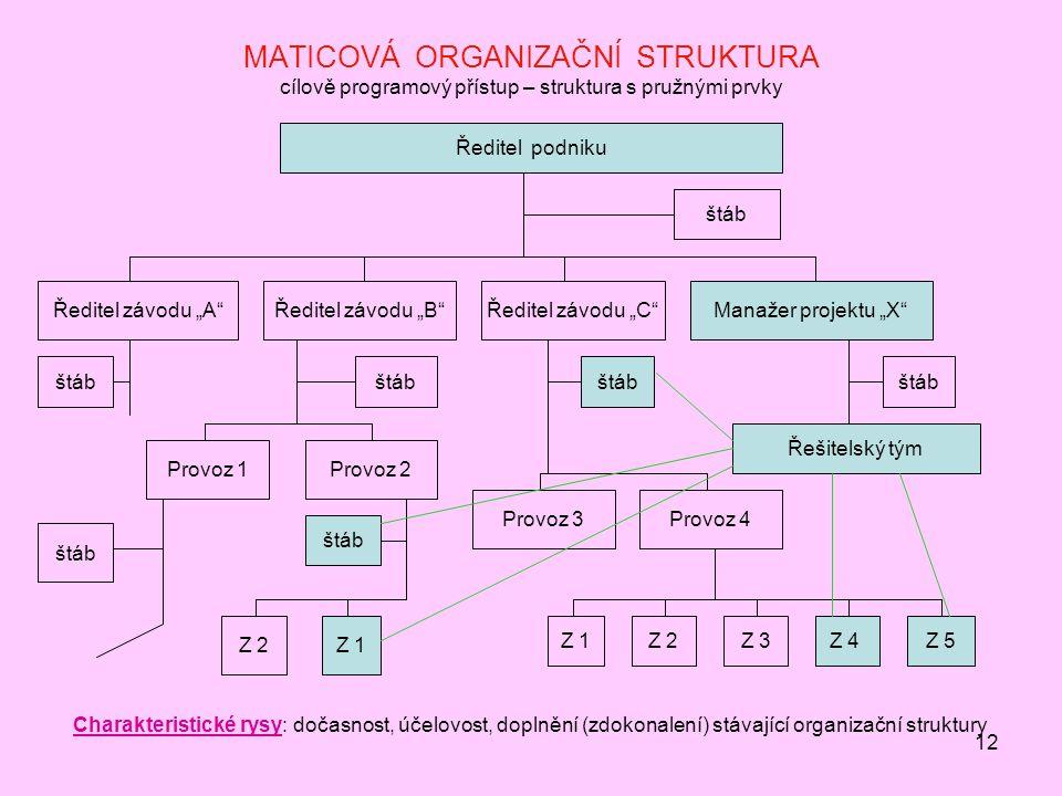 MATICOVÁ ORGANIZAČNÍ STRUKTURA cílově programový přístup – struktura s pružnými prvky