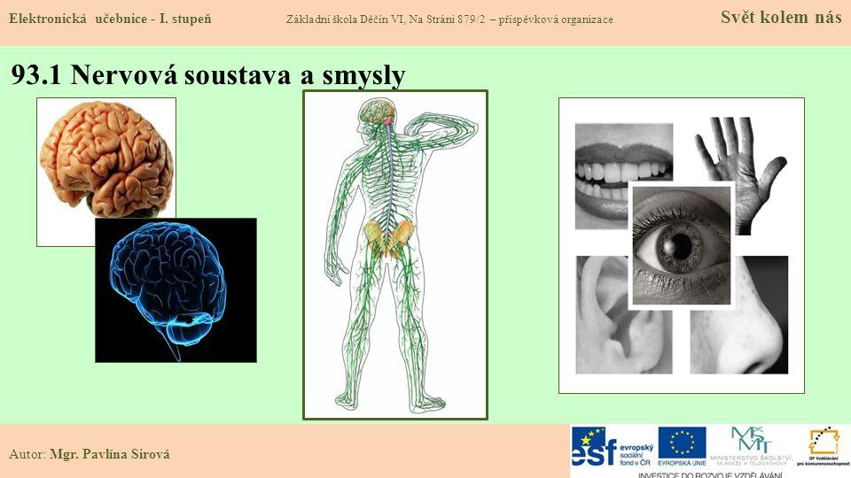 93.1 Nervová soustava a smysly