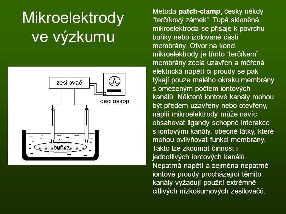 Mikroelektrody ve výzkumu