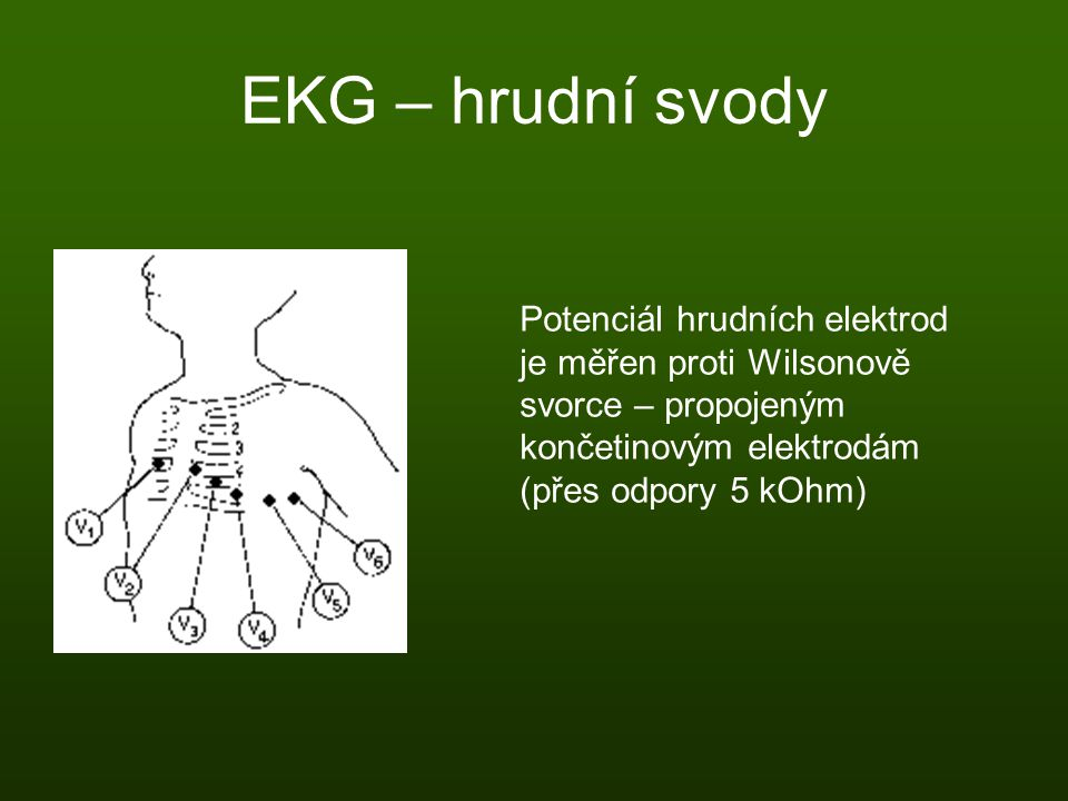 EKG – hrudní svody Potenciál hrudních elektrod je měřen proti Wilsonově svorce – propojeným končetinovým elektrodám (přes odpory 5 kOhm)