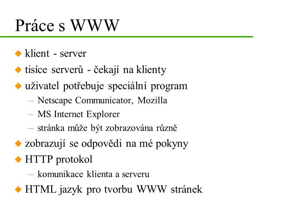 Práce s WWW klient - server tisíce serverů - čekají na klienty