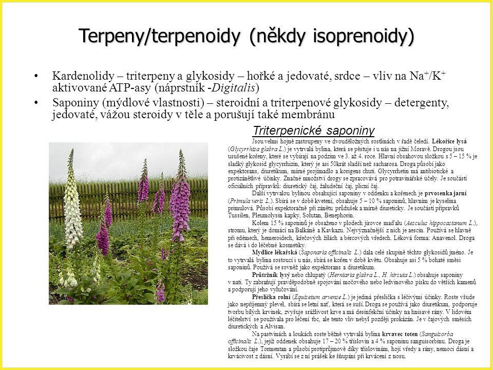 Terpeny/terpenoidy (někdy isoprenoidy)