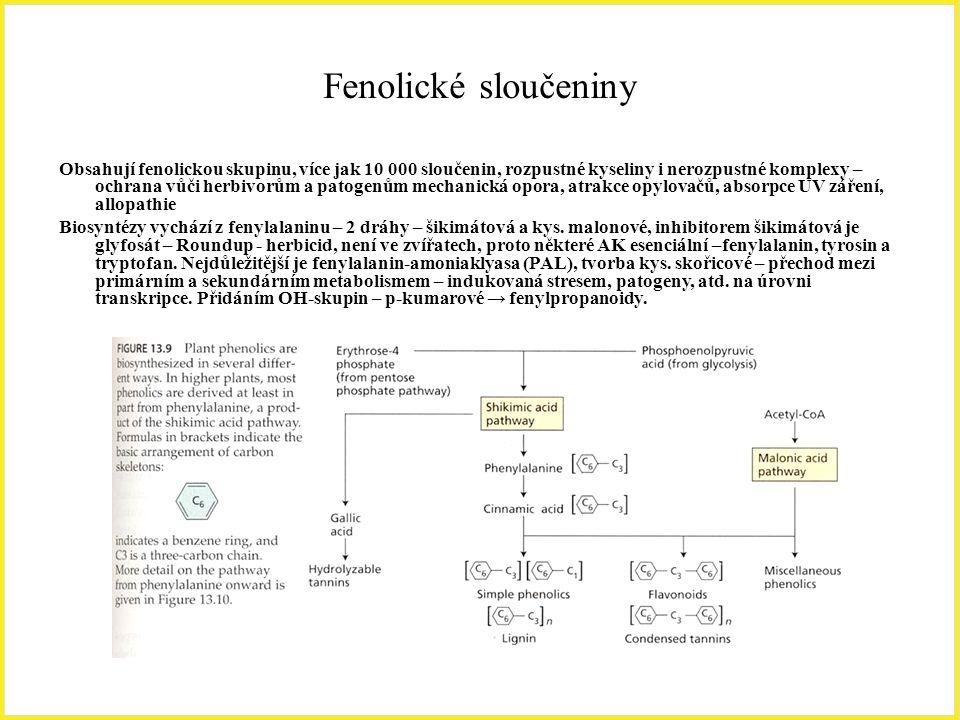 Fenolické sloučeniny