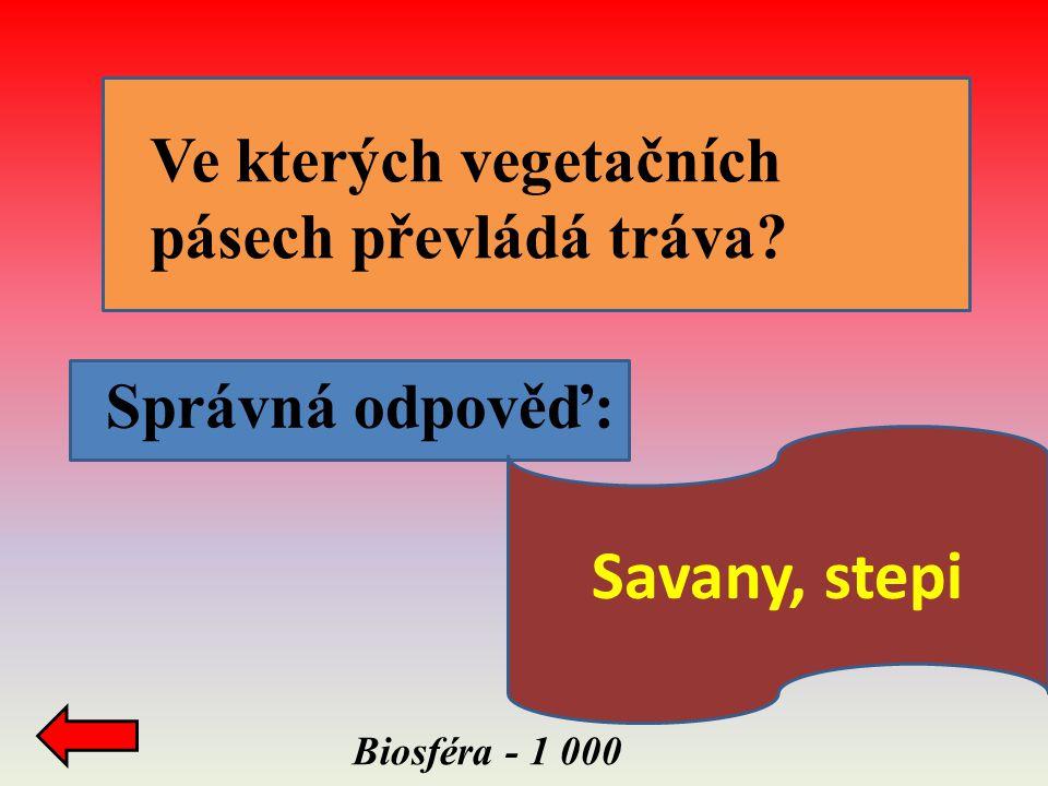 Savany, stepi Ve kterých vegetačních pásech převládá tráva
