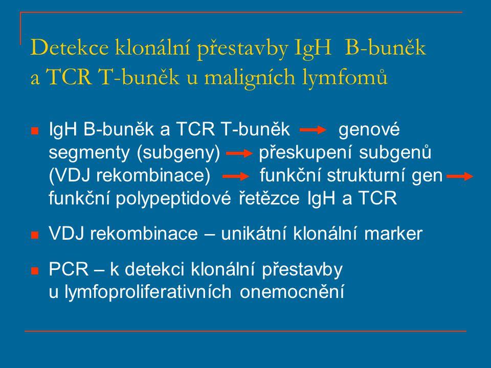 Detekce klonální přestavby IgH B-buněk a TCR T-buněk u maligních lymfomů