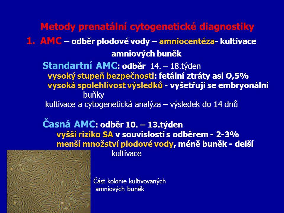 Metody prenatální cytogenetické diagnostiky