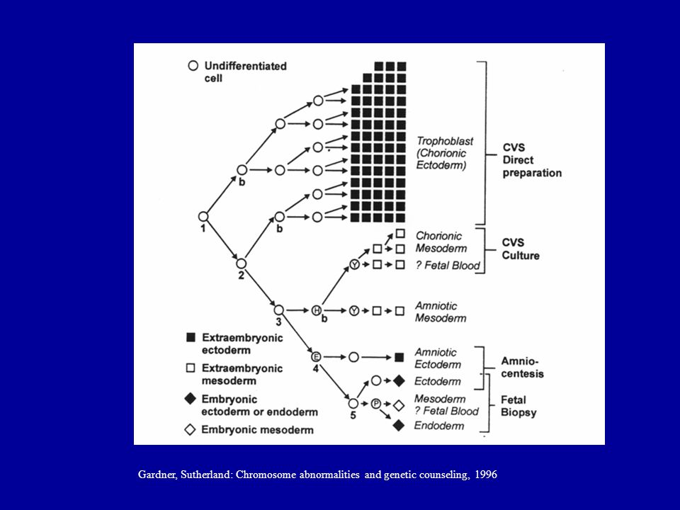 Gardner, Sutherland: Chromosome abnormalities and genetic counseling, 1996