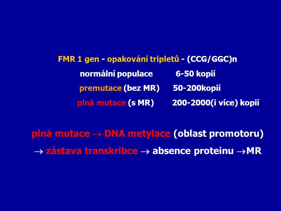 FMR 1 gen - opakování tripletů - (CCG/GGC)n