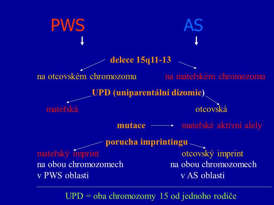 UPD = oba chromozomy 15 od jednoho rodiče