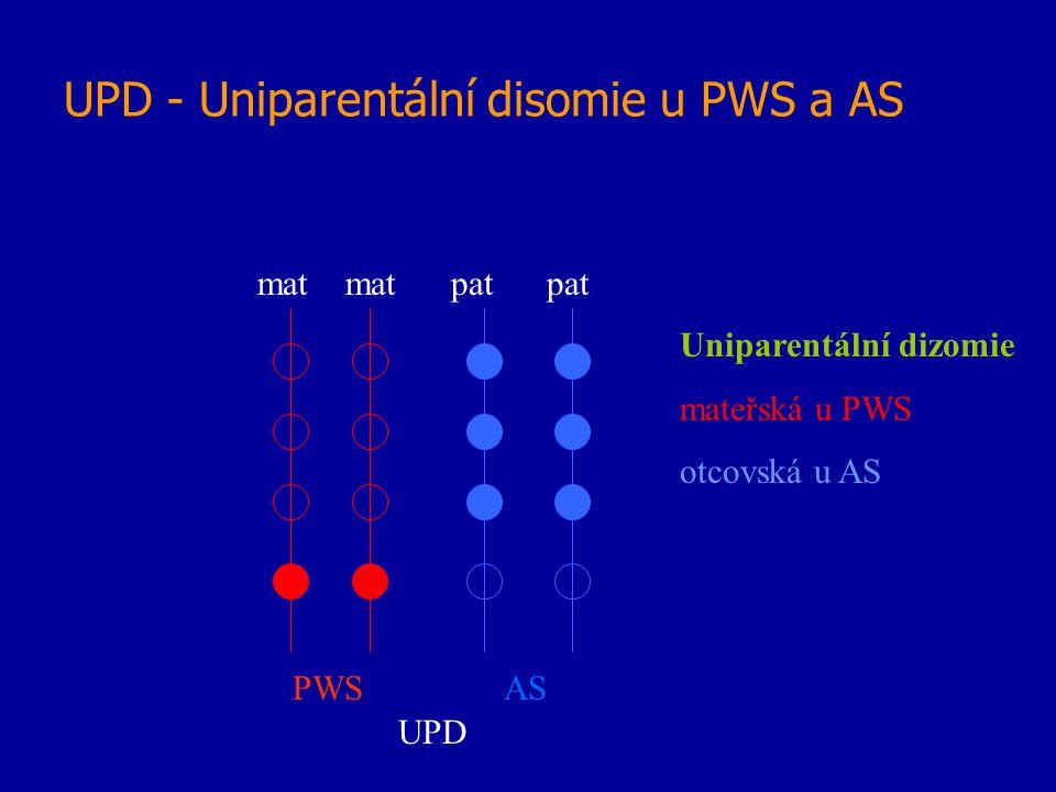UPD - Uniparentální disomie u PWS a AS