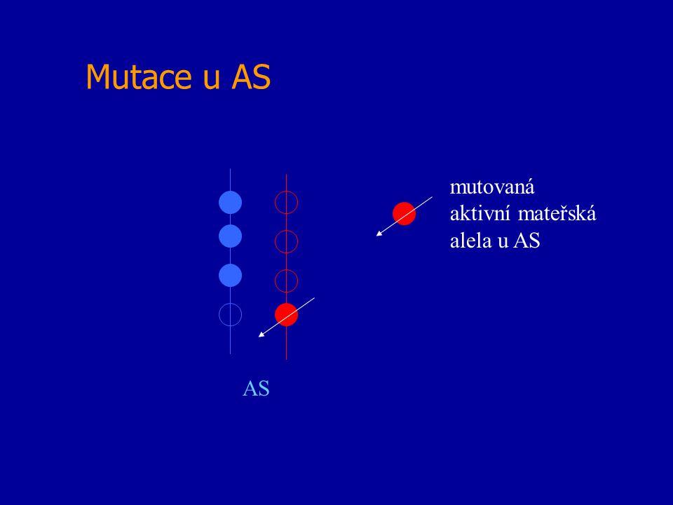 Mutace u AS mutovaná aktivní mateřská alela u AS AS