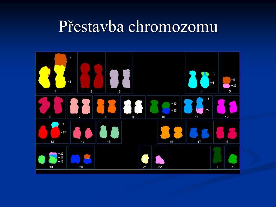 Přestavba chromozomu