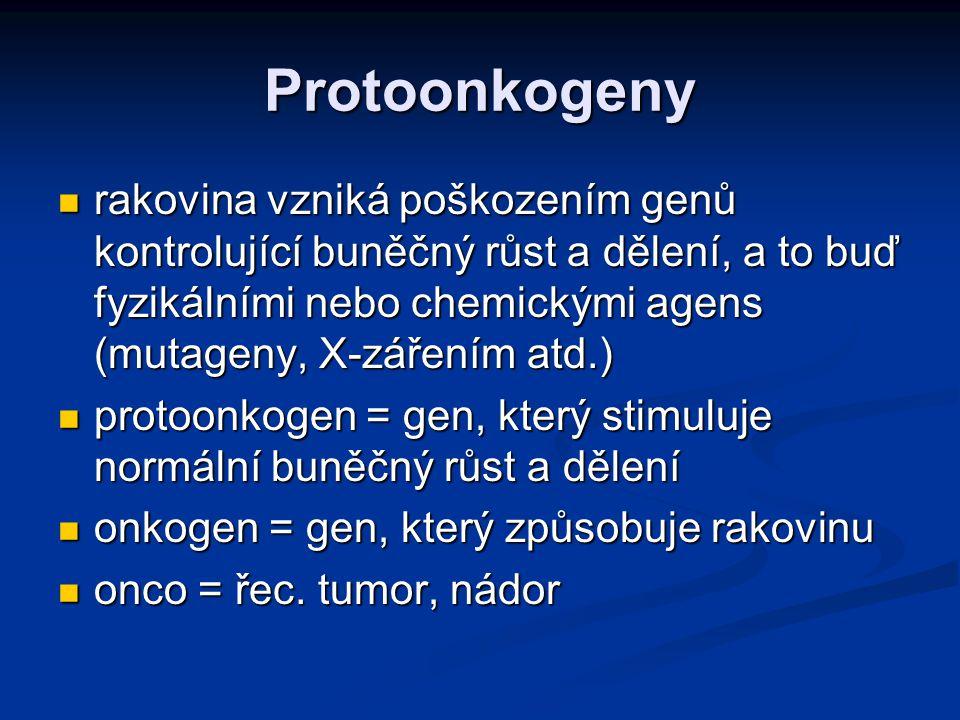 Protoonkogeny
