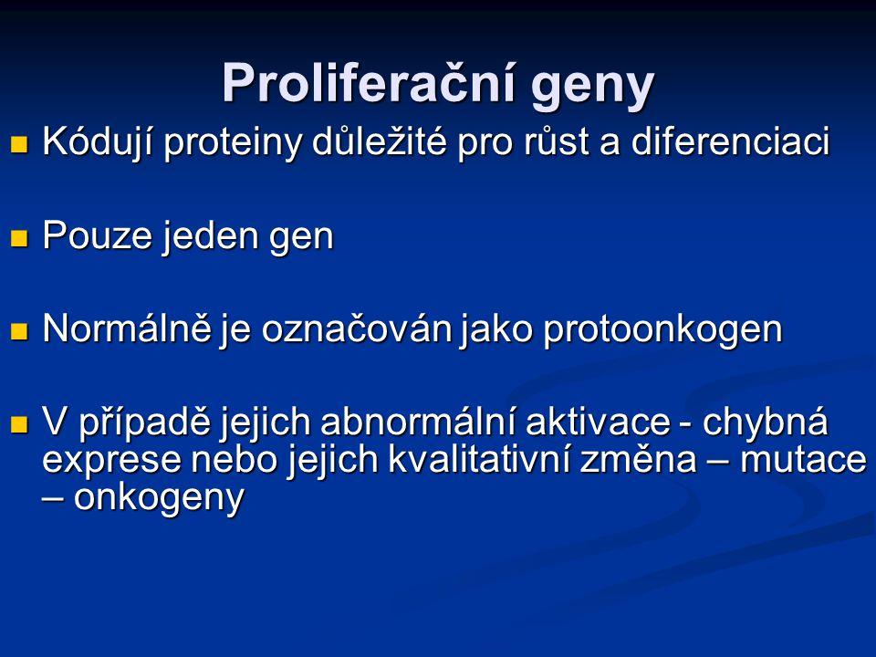 Proliferační geny Kódují proteiny důležité pro růst a diferenciaci