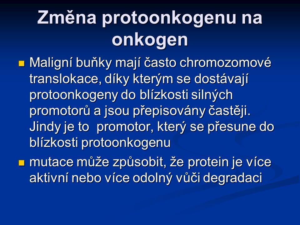 Změna protoonkogenu na onkogen