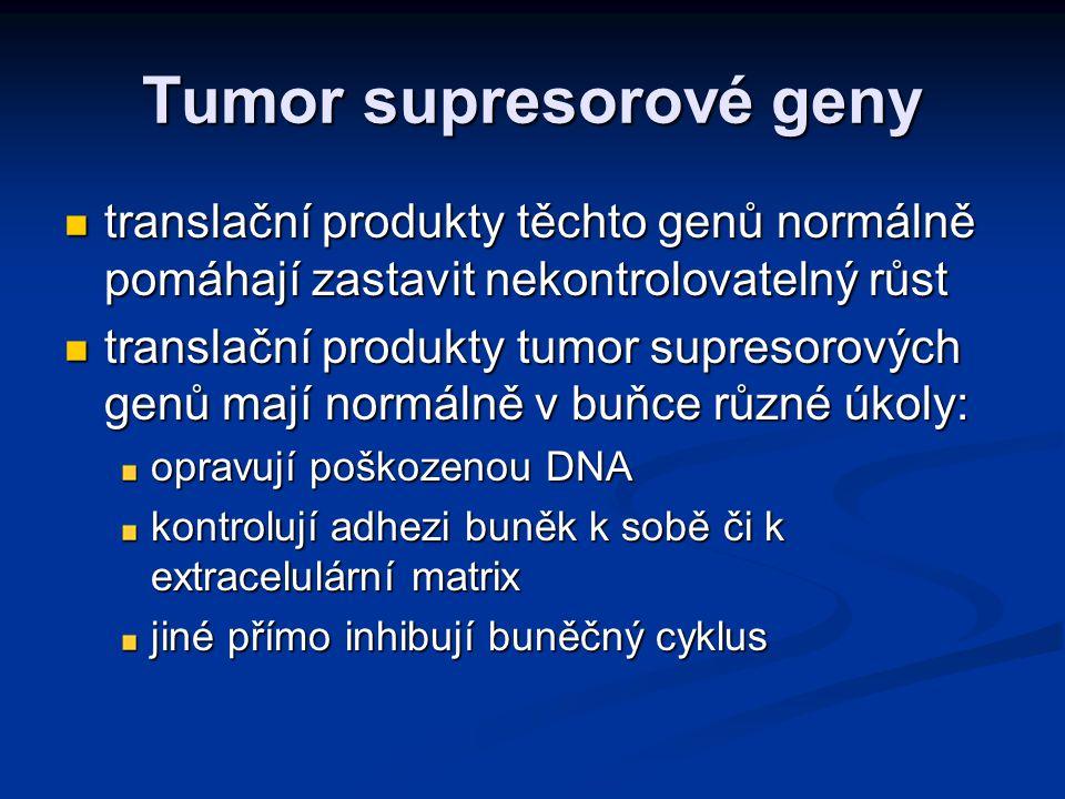 Tumor supresorové geny