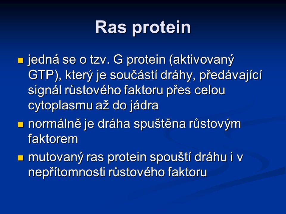 Ras protein