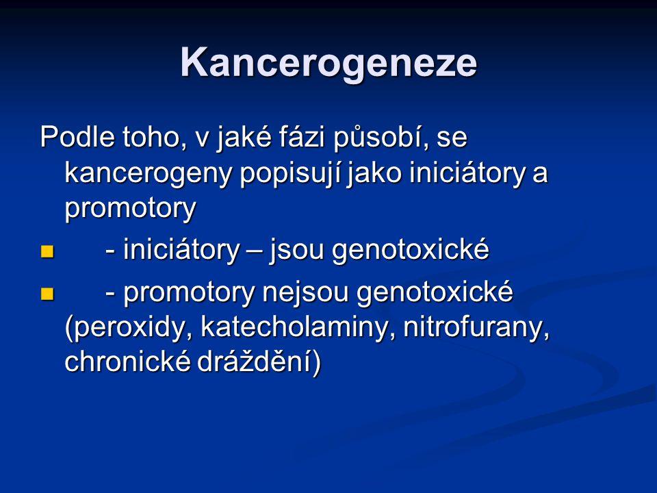 Kancerogeneze Podle toho, v jaké fázi působí, se kancerogeny popisují jako iniciátory a promotory. - iniciátory – jsou genotoxické.