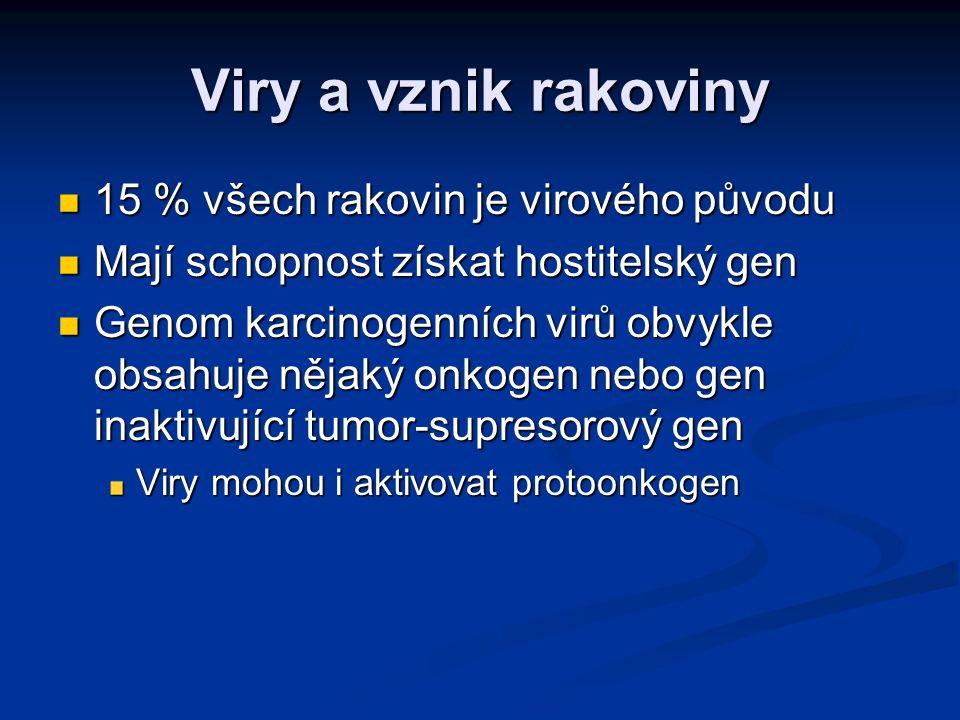 Viry a vznik rakoviny 15 % všech rakovin je virového původu