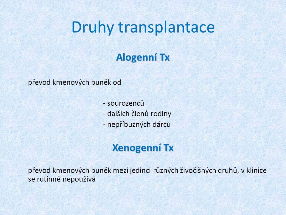 Druhy transplantace Alogenní Tx Xenogenní Tx převod kmenových buněk od