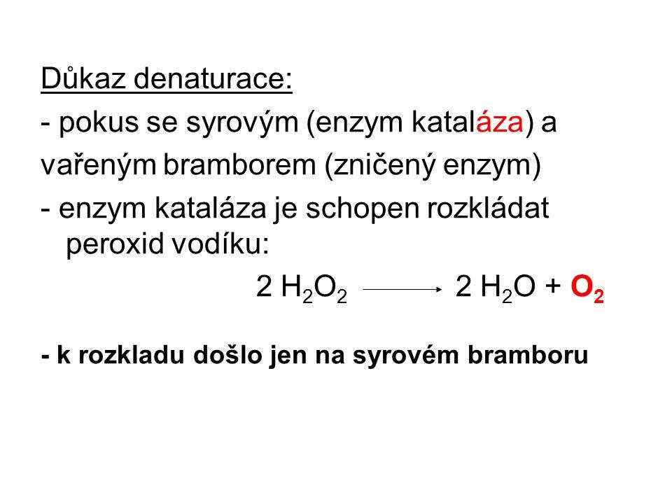 - pokus se syrovým (enzym kataláza) a