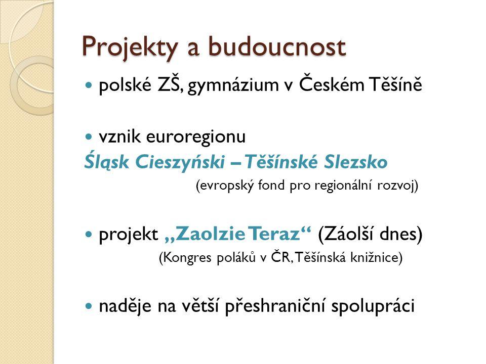 Projekty a budoucnost polské ZŠ, gymnázium v Českém Těšíně