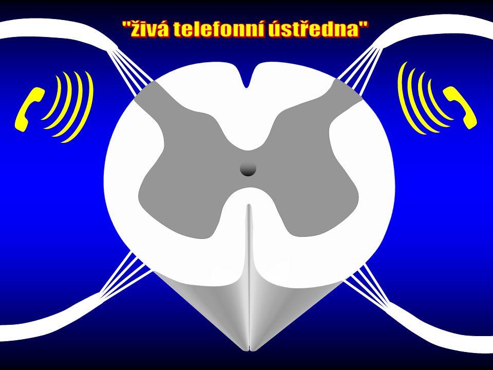 živá telefonní ústředna