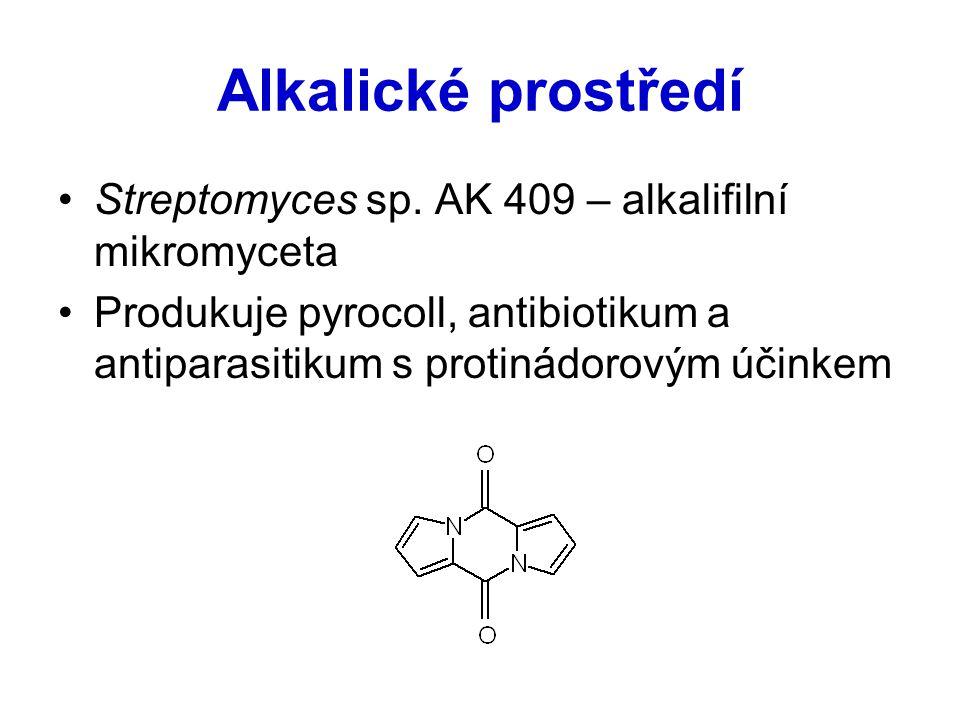 Alkalické prostředí Streptomyces sp. AK 409 – alkalifilní mikromyceta