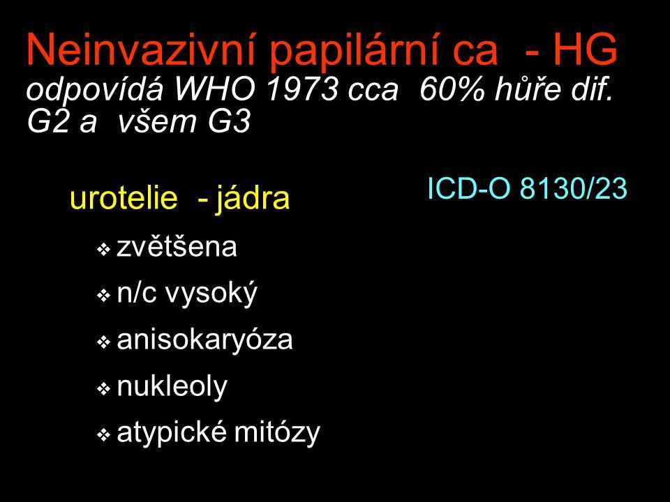 Neinvazivní papilární ca - HG odpovídá WHO 1973 cca 60% hůře dif