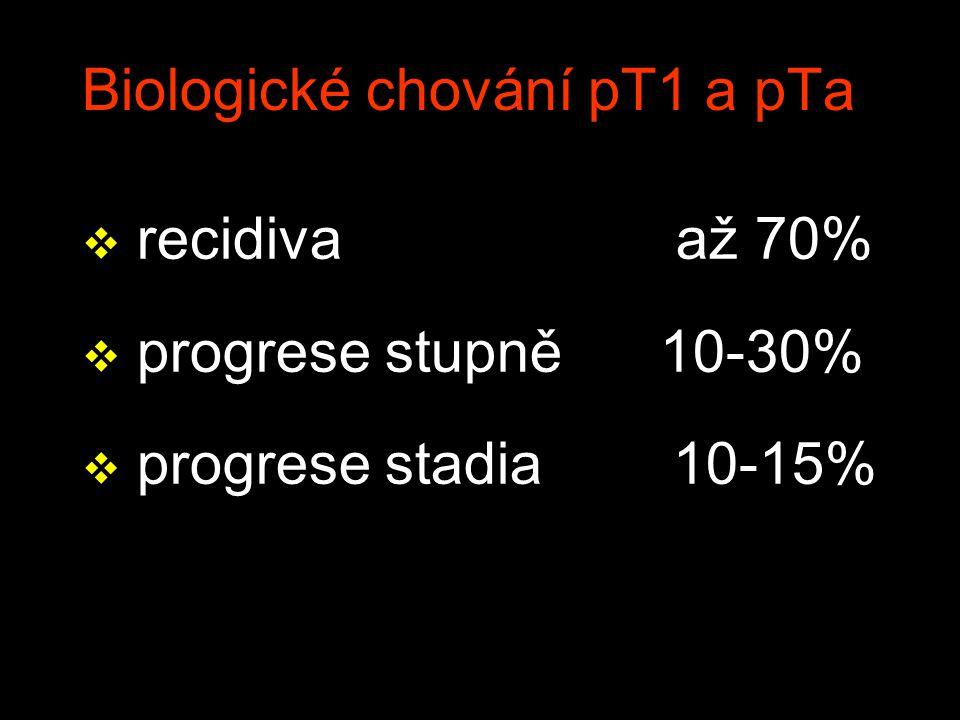 Biologické chování pT1 a pTa