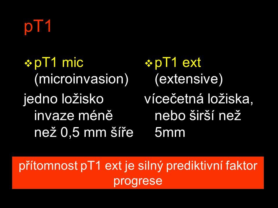 přítomnost pT1 ext je silný prediktivní faktor progrese