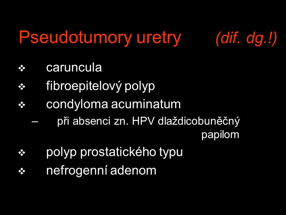 Pseudotumory uretry (dif. dg.!)