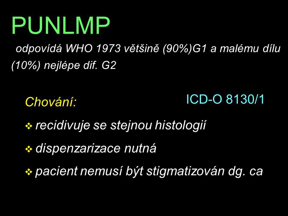 PUNLMP odpovídá WHO 1973 většině (90%)G1 a malému dílu (10%) nejlépe dif. G2